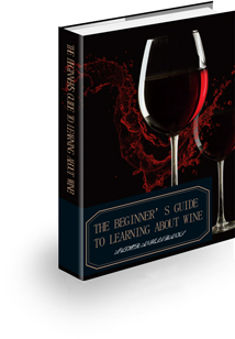 The Beginner's Guide to Learning About Wine!