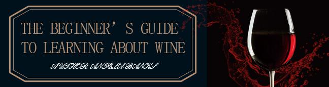 Beginner's Guide to Wine