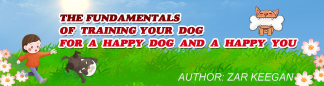 The Fundamentals of Training Your Dog For a Happy Dog and a Happy You