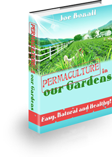 Permaculture in Our Gardens In 2021