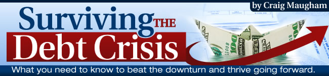 Surviving The Debt Crisis In 2021