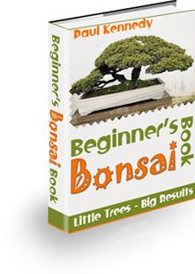 Beginners Bonsai Book In 2021
